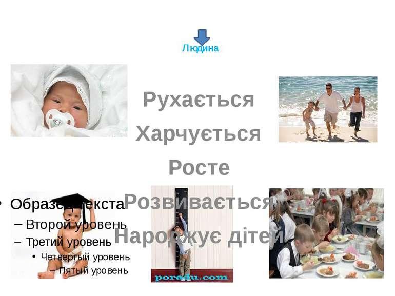 Людина Рухається Харчується Росте Розвивається Народжує дітей