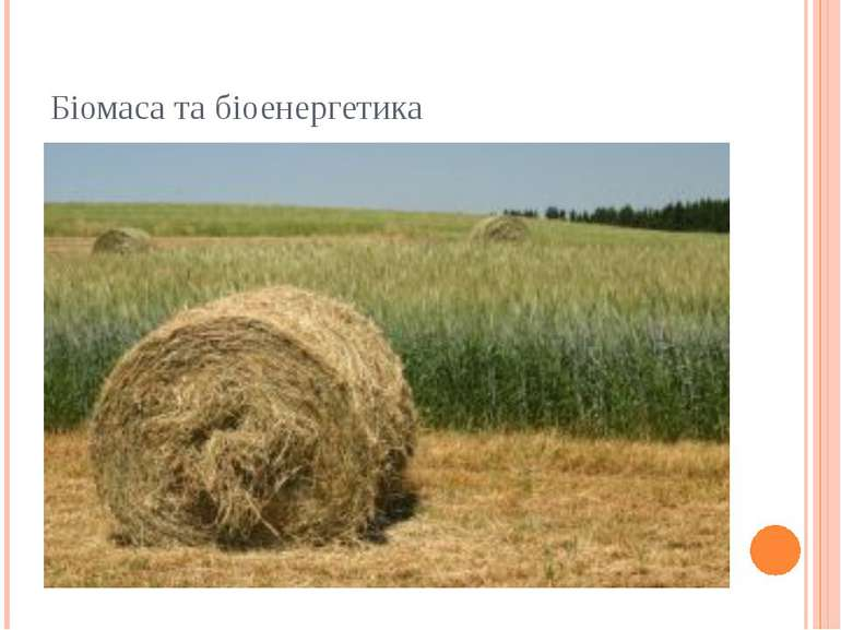 Біомаса та біоенергетика