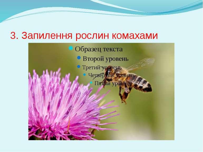 3. Запилення рослин комахами