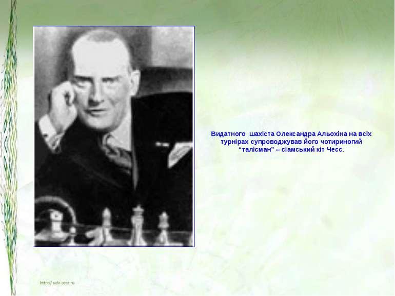 Видатного шахіста Олександра Альохіна на всіх турнірах супроводжував його чот...