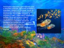 Ракоподібні відіграють дуже важливу роль в економіці природи. Органічна речов...