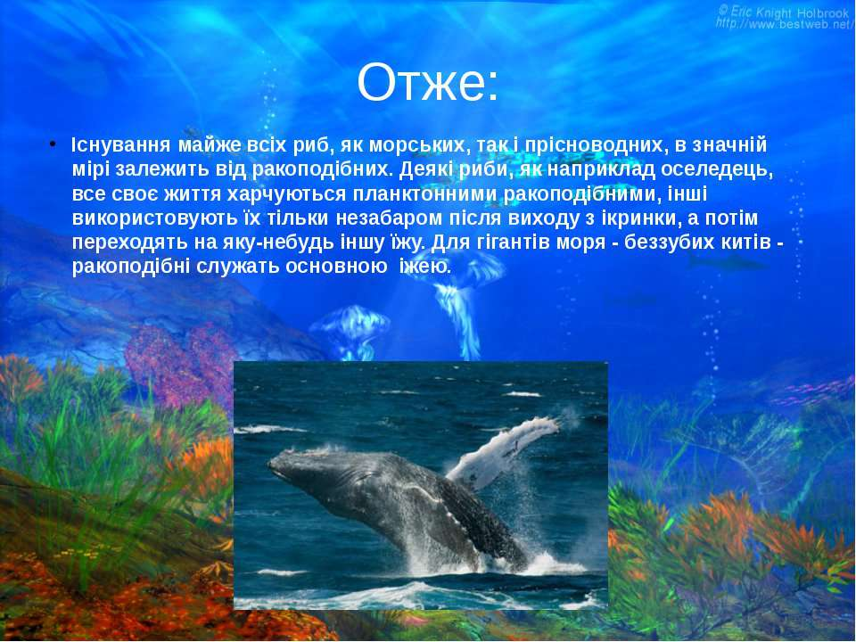 Отже: Існування майже всіх риб, як морських, так і прісноводних, в значній мі...