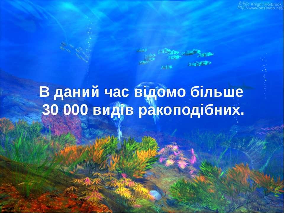 В даний час відомо більше 30 000 видів ракоподібних.