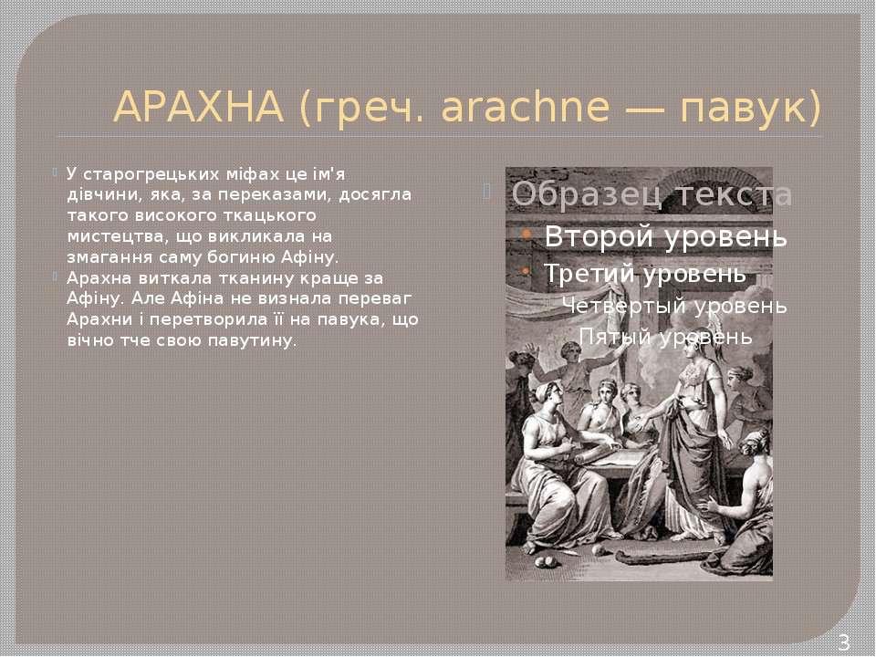 АРАХНА (греч. arachne — павук) У старогрецьких міфах це ім'я дівчини, яка, за...