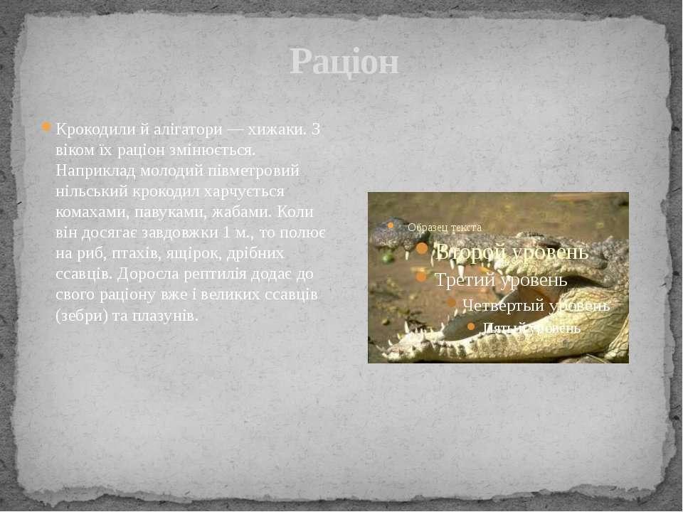 Раціон Крокодили й алігатори— хижаки. З віком їх раціон змінюється. Наприкла...