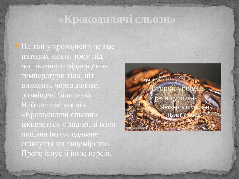 «Крокодилячі сльози» На тілі у крокодилів не має потових залоз, тому під час ...