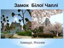 Химедзі, Япония Замок Білої Чаплі