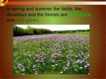 In spring and summer the fields, the meadows and the forests are light green ...