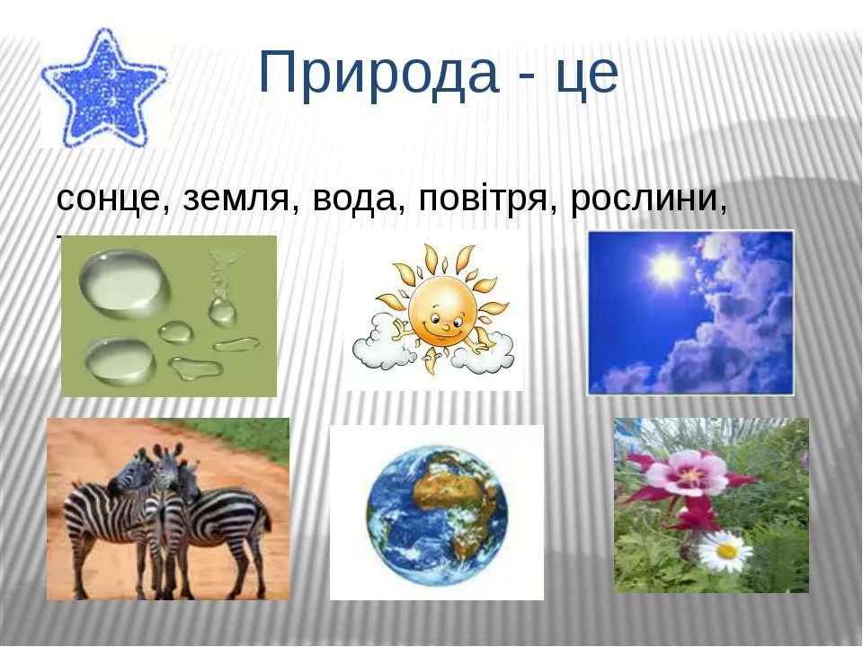 Природа - це сонце, земля, вода, повітря, рослини, тварини