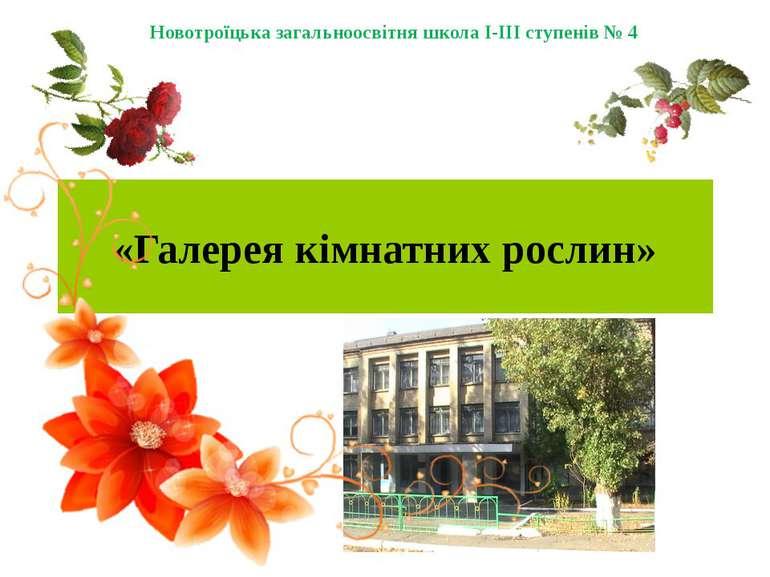 «Галерея кімнатних рослин» Новотроїцька загальноосвітня школа І-ІІІ ступенів № 4