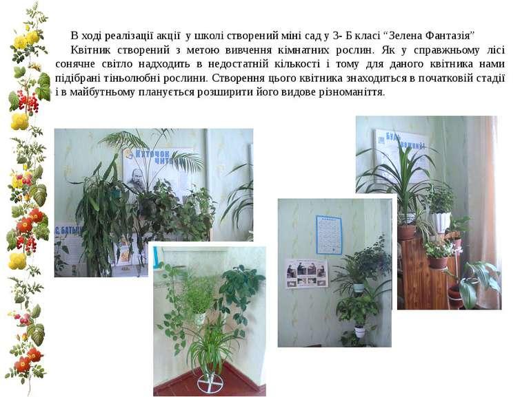 """В ході реалізації акції у школі створений міні сад у 3- Б класі """"Зелена Фанта..."""