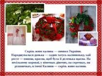 Скрізь живе калина — символ України. Народжувалася донька — садив татусь кали...