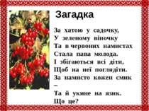 Загадка За хатою у садочку, У зеленому віночку Та в червоних намистах Стала п...