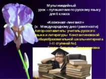 Мультимедийный урок – путешествие по русскому языку для 6 класса «Космонавт-л...