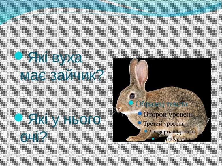 Які вуха має зайчик? Які у нього очі?