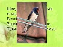 Швидко скрізь цей птах літає, Безліч мошок поїдає, За вікном гніздо будує, Ті...