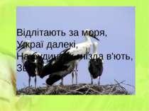 Відлітають за моря, У краї далекі, На будинках гнізда в'ють, Звуть же їх ...