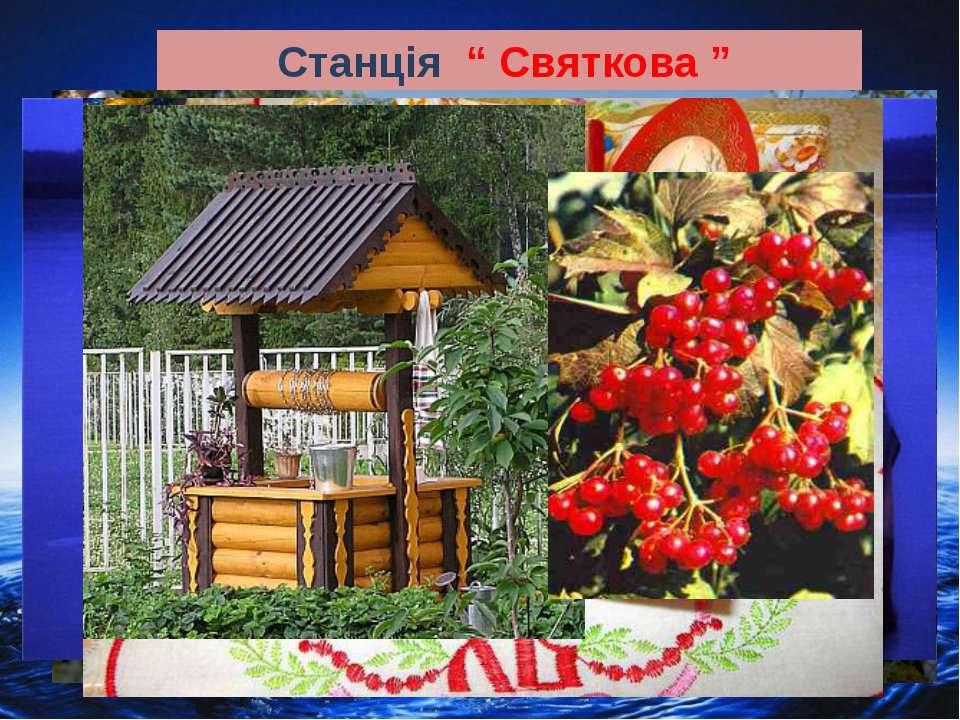 """Станція """" Святкова """""""