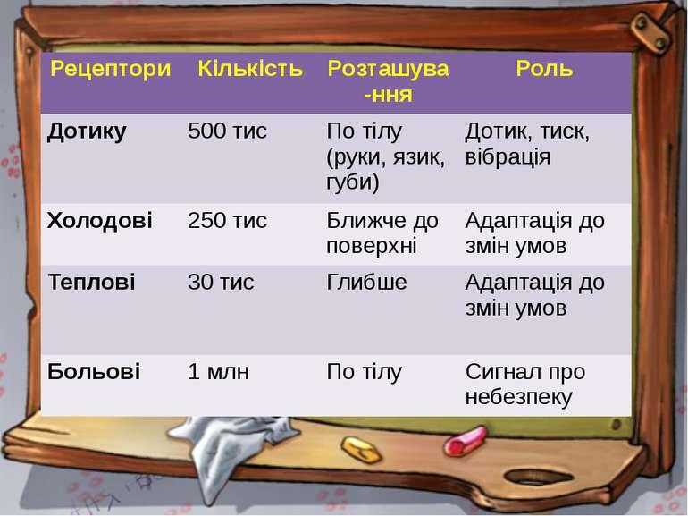 Рецептори Кількість Розташува-ння Роль Дотику 500 тис По тілу (руки, язик, гу...