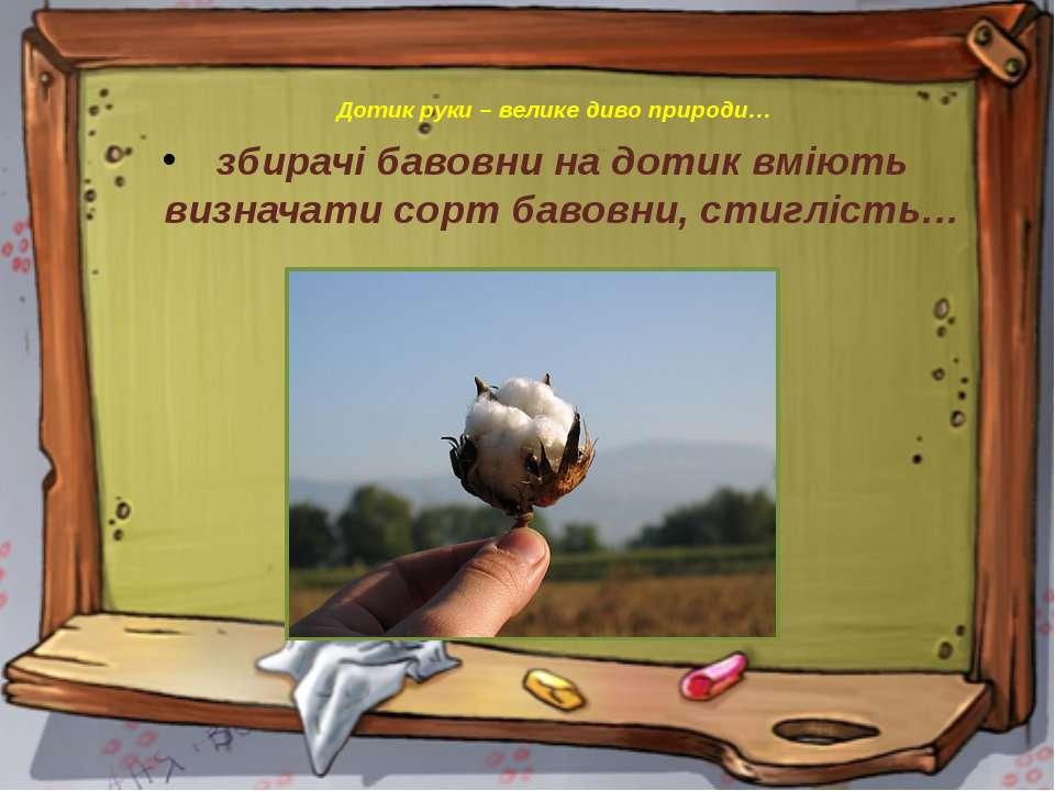 Дотик руки – велике диво природи… збирачі бавовни на дотик вміють визначати с...