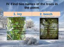 IV. Find two names of the trees in the poem. 1. ivy 2. beech