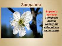Завдання Вправа з квіткою Потрібно взяти квітку та відповісти на питання