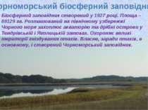 Чорноморський біосферний заповідник Біосферний заповідник створений у 1927 ро...