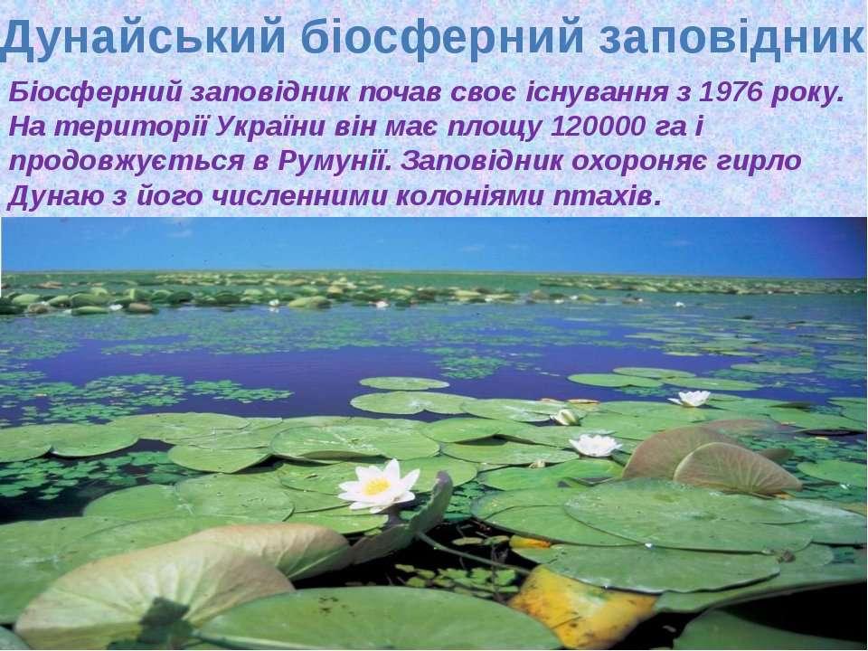 Дунайський біосферний заповідник Біосферний заповідник почав своє існування з...