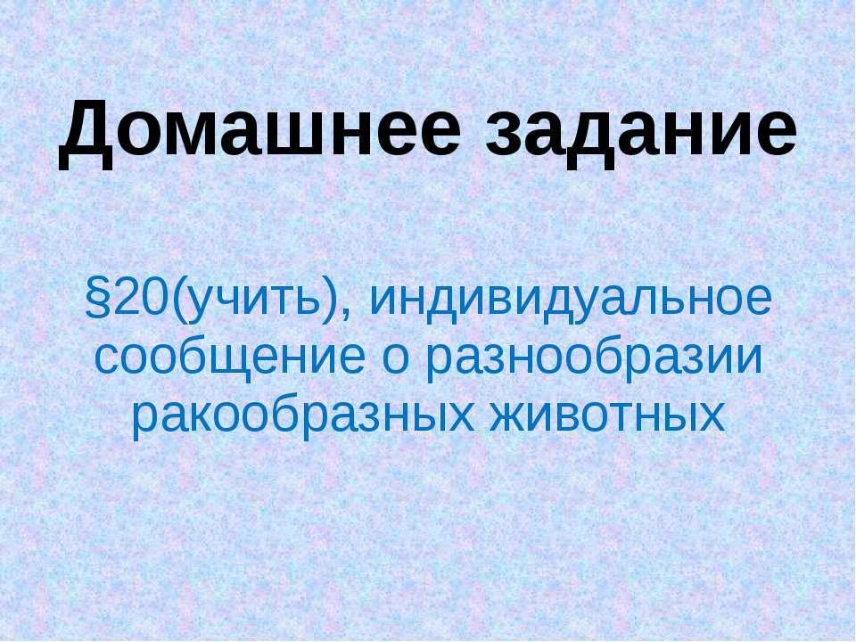 Домашнее задание §20(учить), индивидуальное сообщение о разнообразии ракообра...