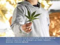 Термін «наркоманія» означає хворобливий потяг, пристрасть до вживання наркоти...