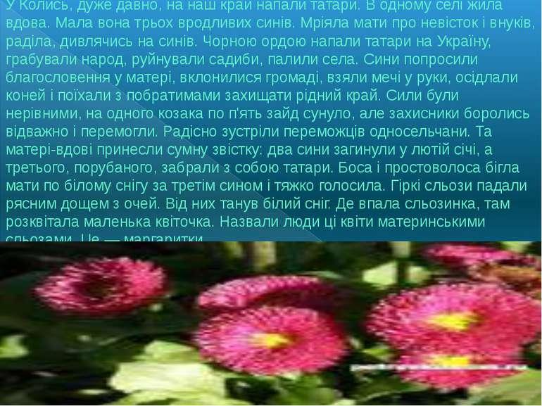 У Колись, дуже давно, на наш край напали татари. В одному селі жила вдова. Ма...