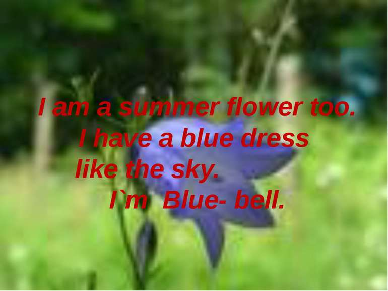 I am a summer flower too. I have a blue dress like the sky. I`m Blue- bell.