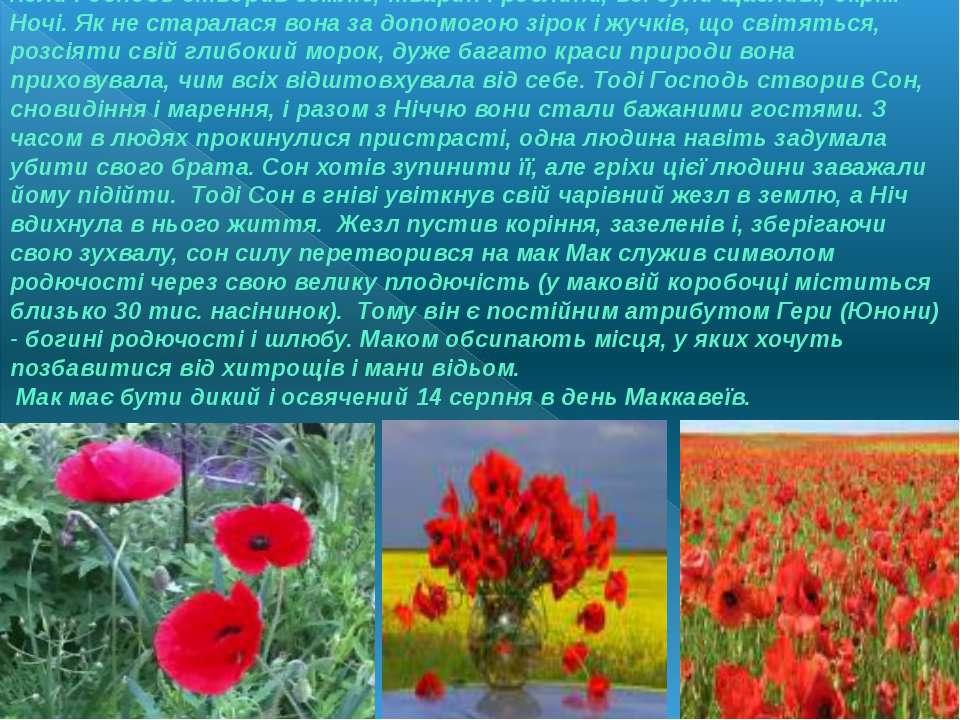Коли Господь створив землю, тварин і рослини, всі були щасливі, окрім Ночі. Я...