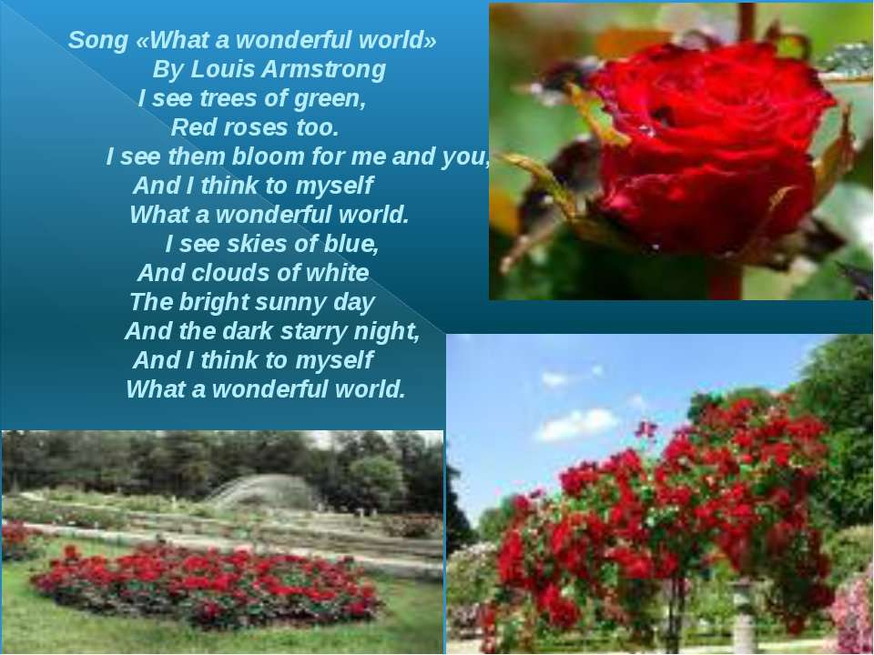 Song «What a wonderful world» By Louis Armstrong I see trees of green, Red ro...