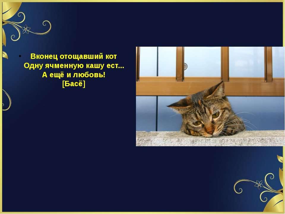 Вконец отощавший кот Однy ячменнyю кашy ест... А ещё и любовь! [Басё]