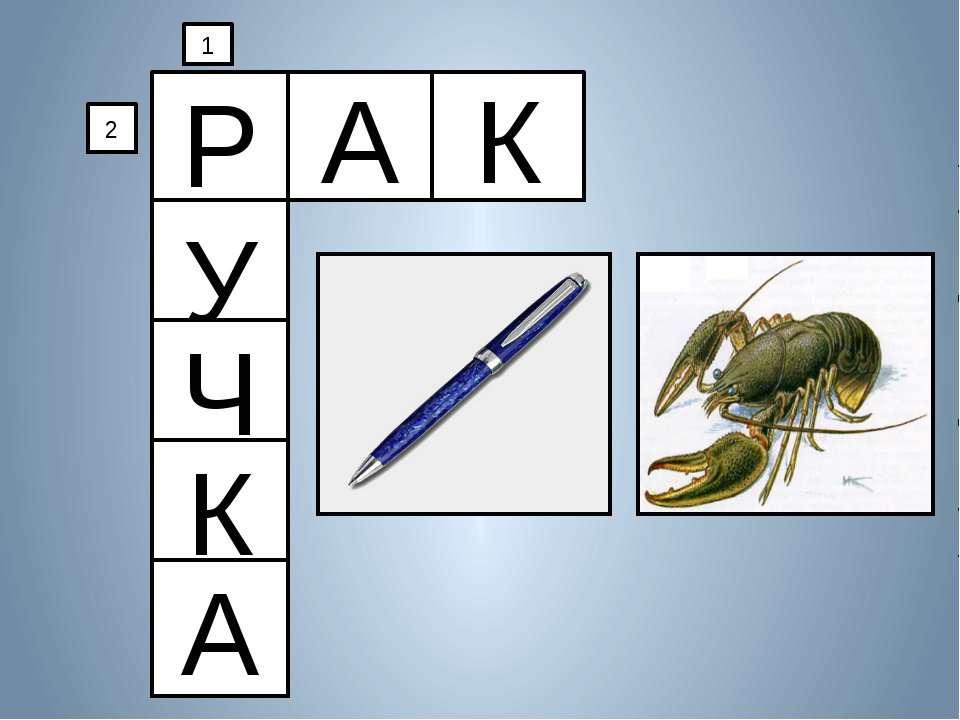 Р А К У Ч К А 1 2