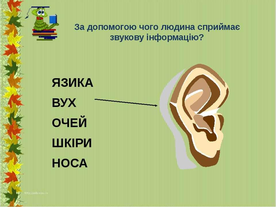 За допомогою чого людина сприймає звукову інформацію? ЯЗИКА ВУХ ОЧЕЙ ШКІРИ НОСА
