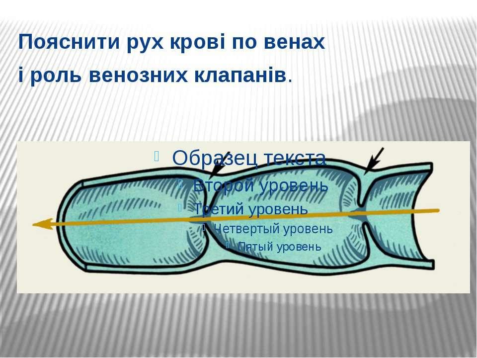 Пояснити рух крові по венах і роль венозних клапанів.