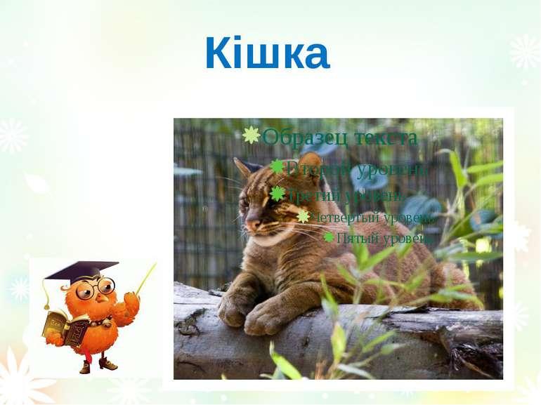 Кішка Вознюк Тетяна Василівна