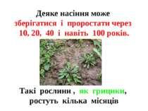 Деяке насіння може зберігатися і проростати через 10, 20, 40 і навіть 100 рок...