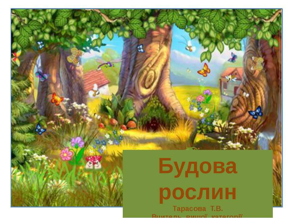 Будова рослин Будова рослин Тарасова Т.В. Вчитель вищої категорії Златоустівс...