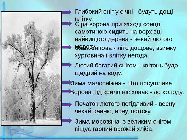 Глибокий сніг у січні - будуть дощі влітку. Сіра ворона при заході сонця само...