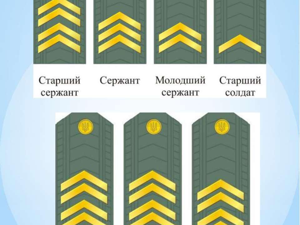 Про, погоны и звания в картинках украина