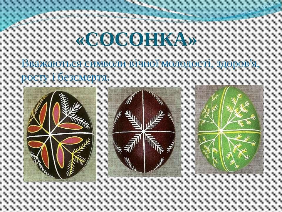 «СОСОНКА» Вважаються символи вічної молодості, здоров'я, росту і безсмертя.