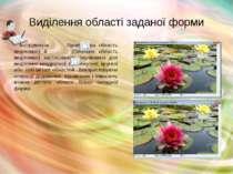 Виділення області заданої форми Інструменти Прямокутна область виділення) й (...