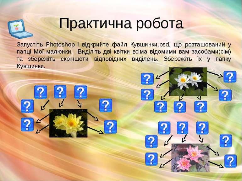 Практична робота Запустіть Photoshop і відкрийте файл Кувшинки.psd, що розташ...