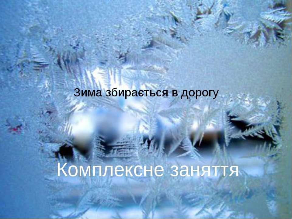 Зима збирається в дорогу Комплексне заняття