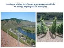 На півдні країни (особливо в долинах річокРейн таВезер) вирощуєтьсявиноград