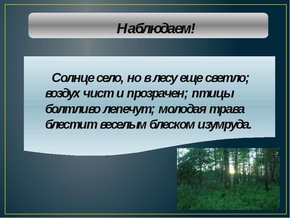 Наблюдаем! Солнце село, но в лесу еще светло; воздух чист и прозрачен; птицы ...