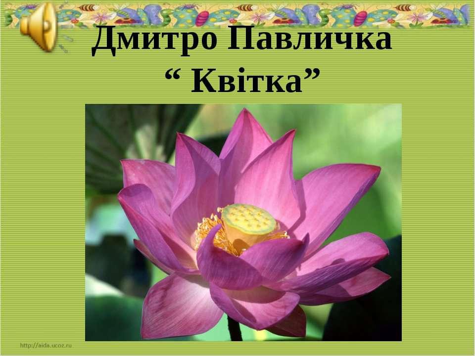 """Дмитро Павличка """" Квітка"""""""